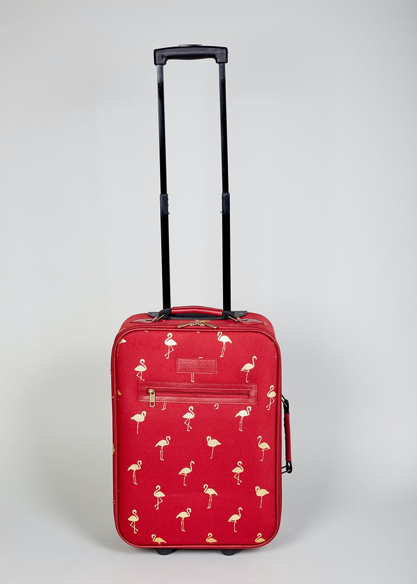 Flamingo Constellation Cabin Case