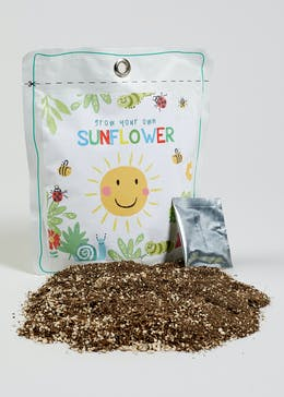 Grow Your Own Sunflower Set (18cm x 16cm x 4cm)