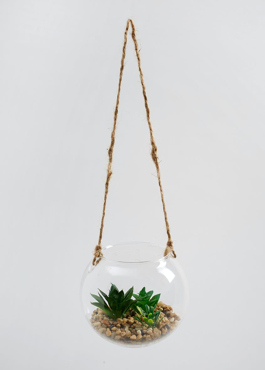 Hanging Plant in Glass Ball (17cm x 12cm x 12cm)
