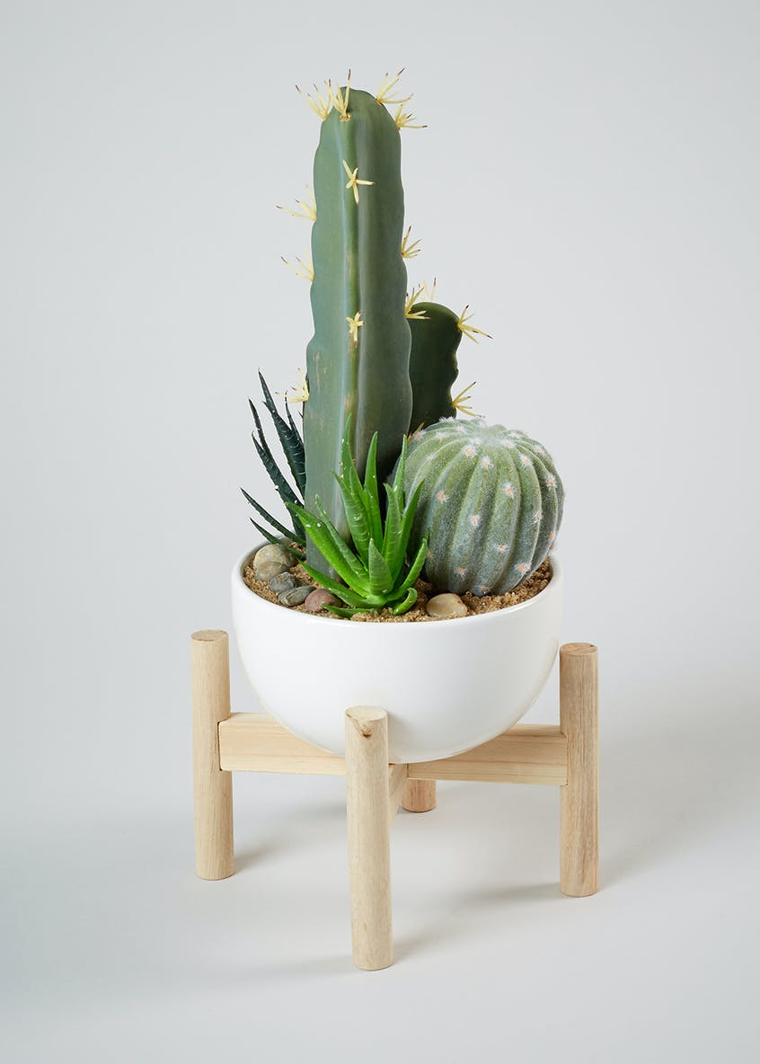 Cacti in Ceramic Pot (42cm)