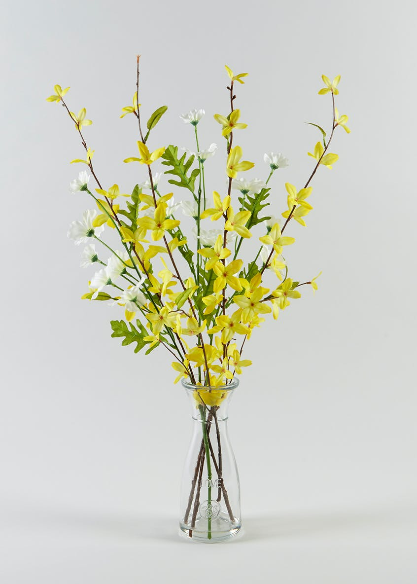 Forsythia in Conical Bottle (45cm x 8cm)