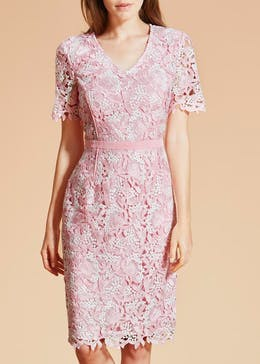 FWM Two-Tone Lace Pencil Dress