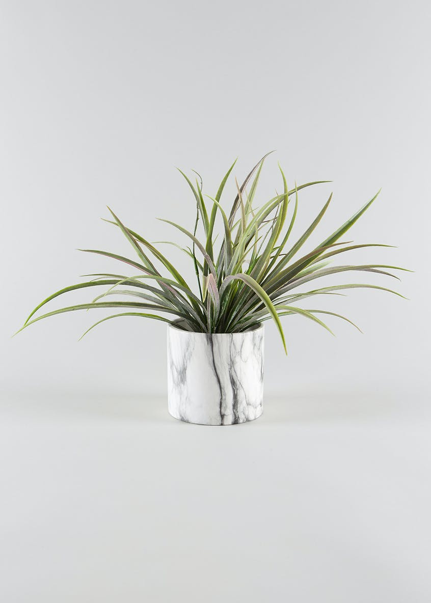Grass in Marble Pot (35cm x 12cm x 12cm)