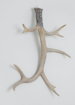 Antler Wall Decoration (61cm x 50cm x 19cm)