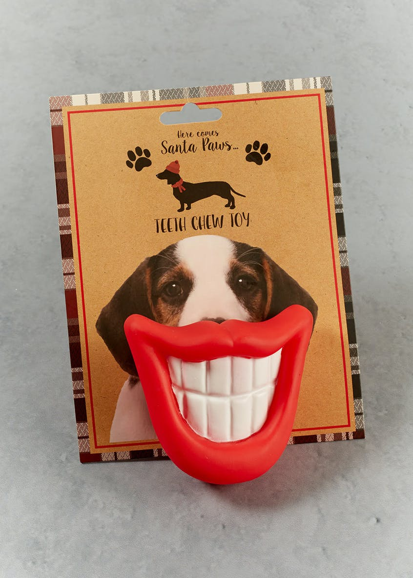Novelty Teeth Dog Chew Toy (9cm x 6cm)