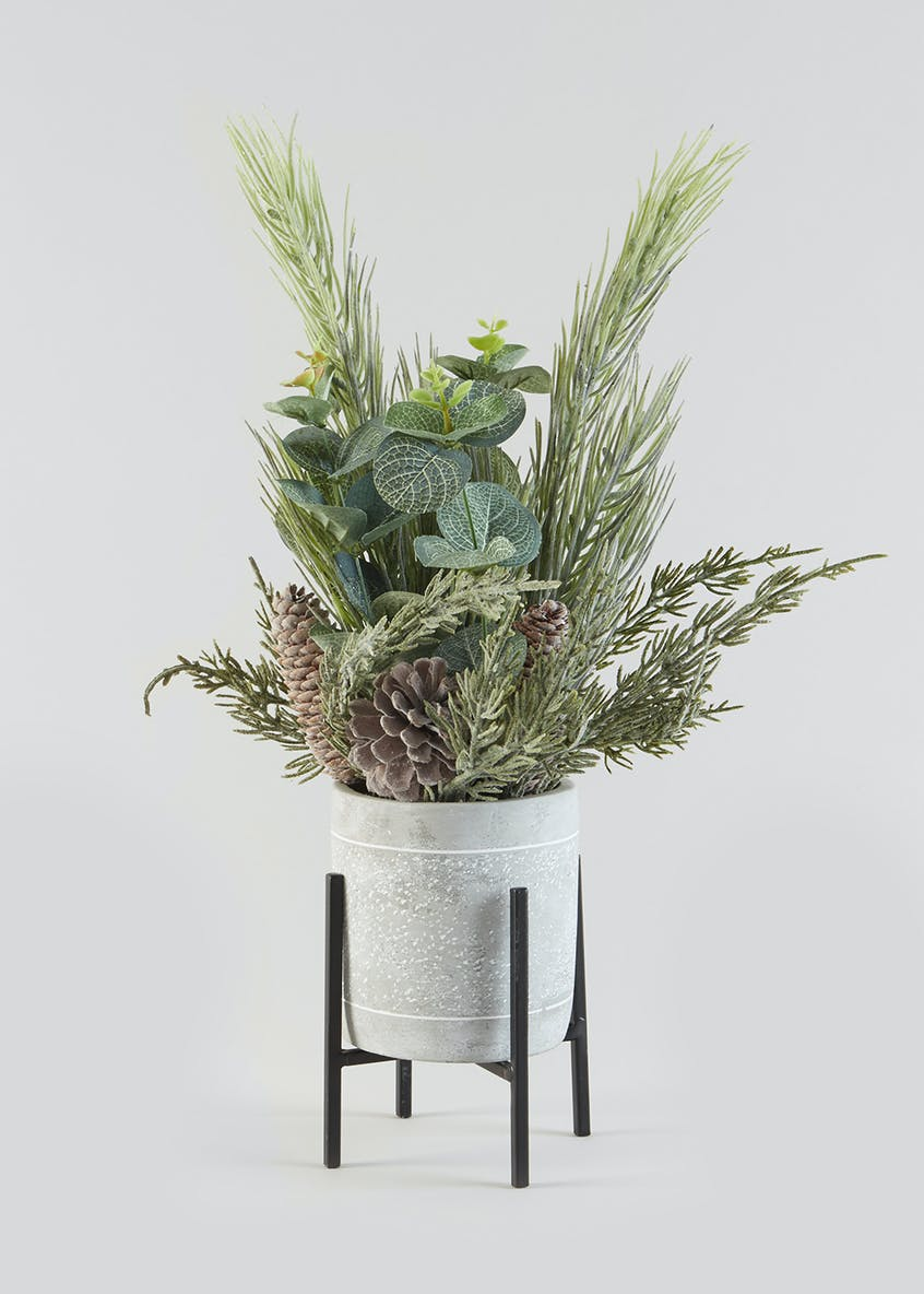 Potted Pinecones & Foliage on Stand (30cm)