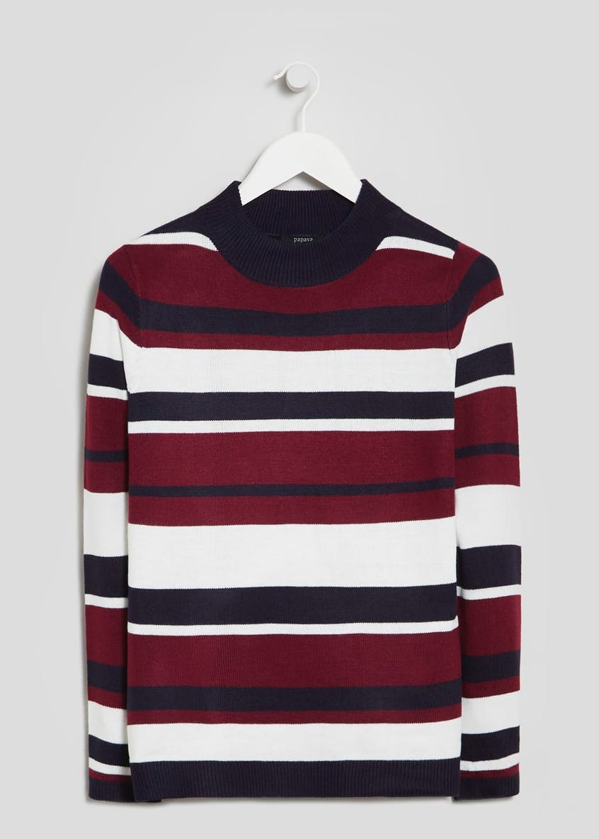 Super Soft Stripe Turtle Neck Jumper