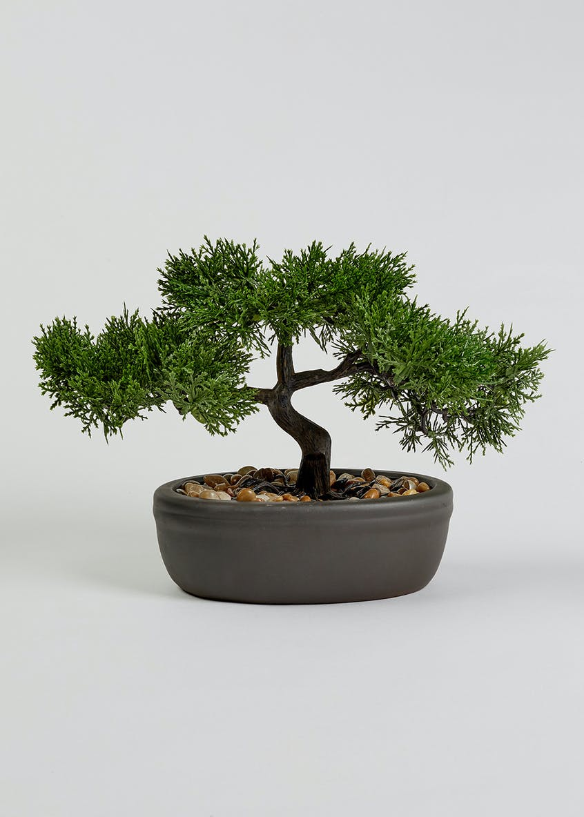 Small Bonsai Plant (30cm x 22cm x 16cm)