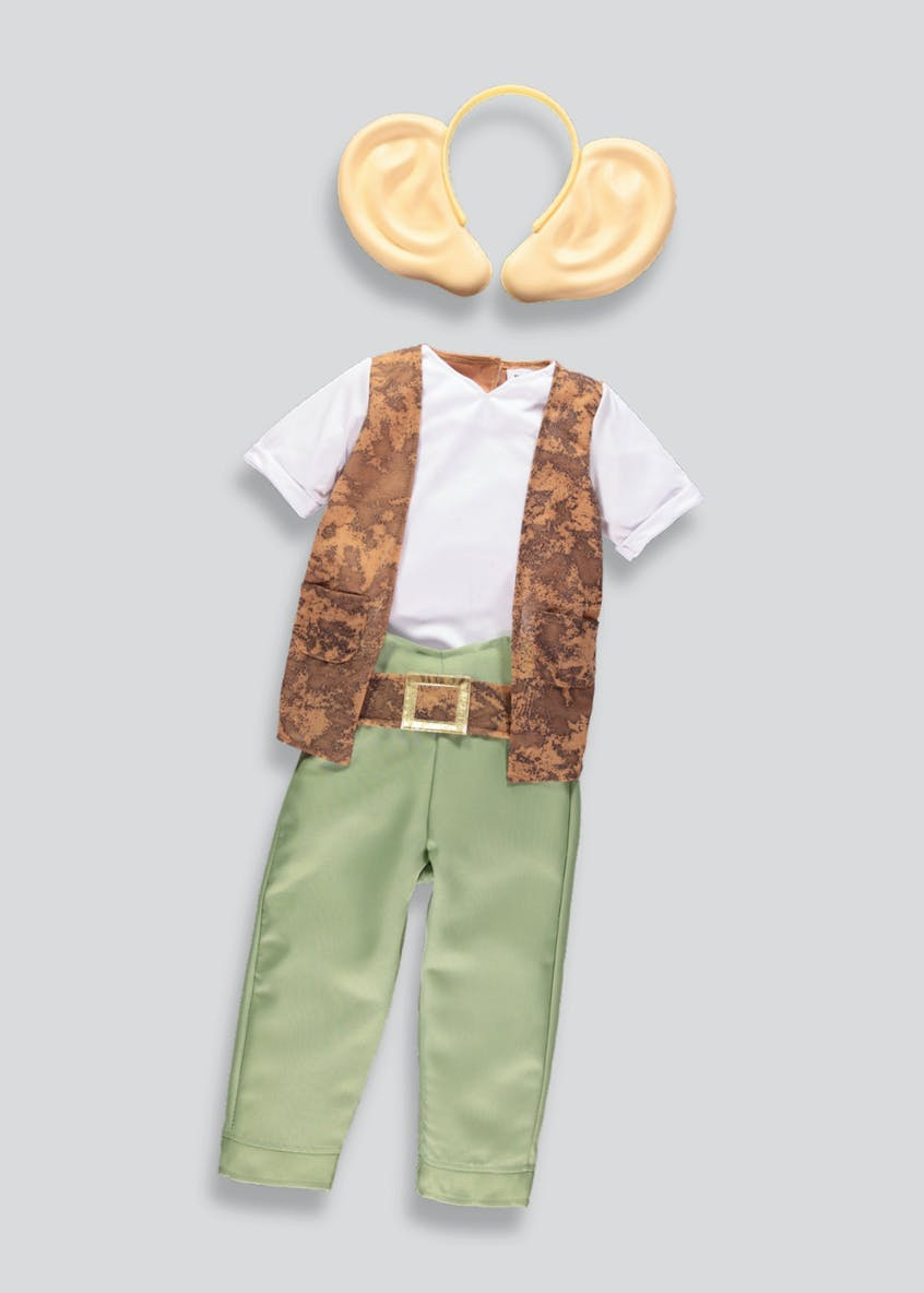 Kids Roald Dahl BFG Fancy Dress Costume (3-8yrs)