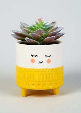 Smiling Face Potted Plant