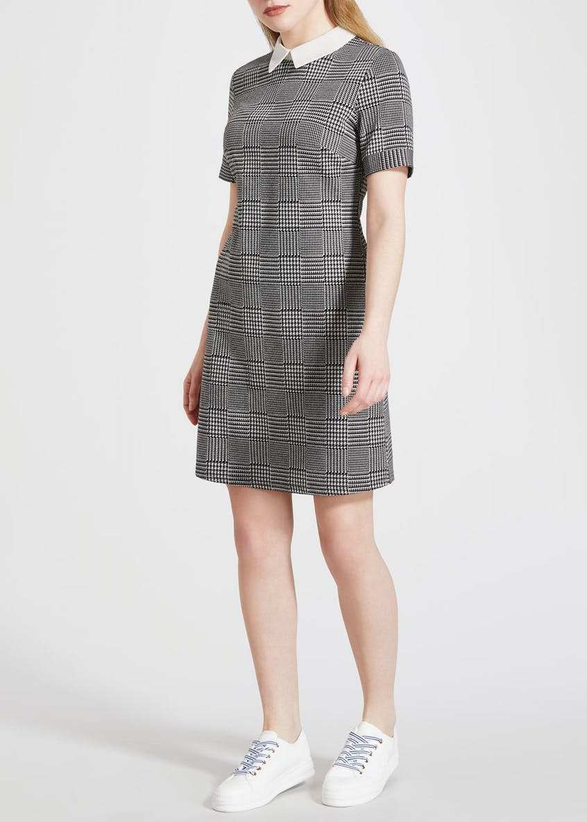Papaya Petite Check Collar Ponte Dress
