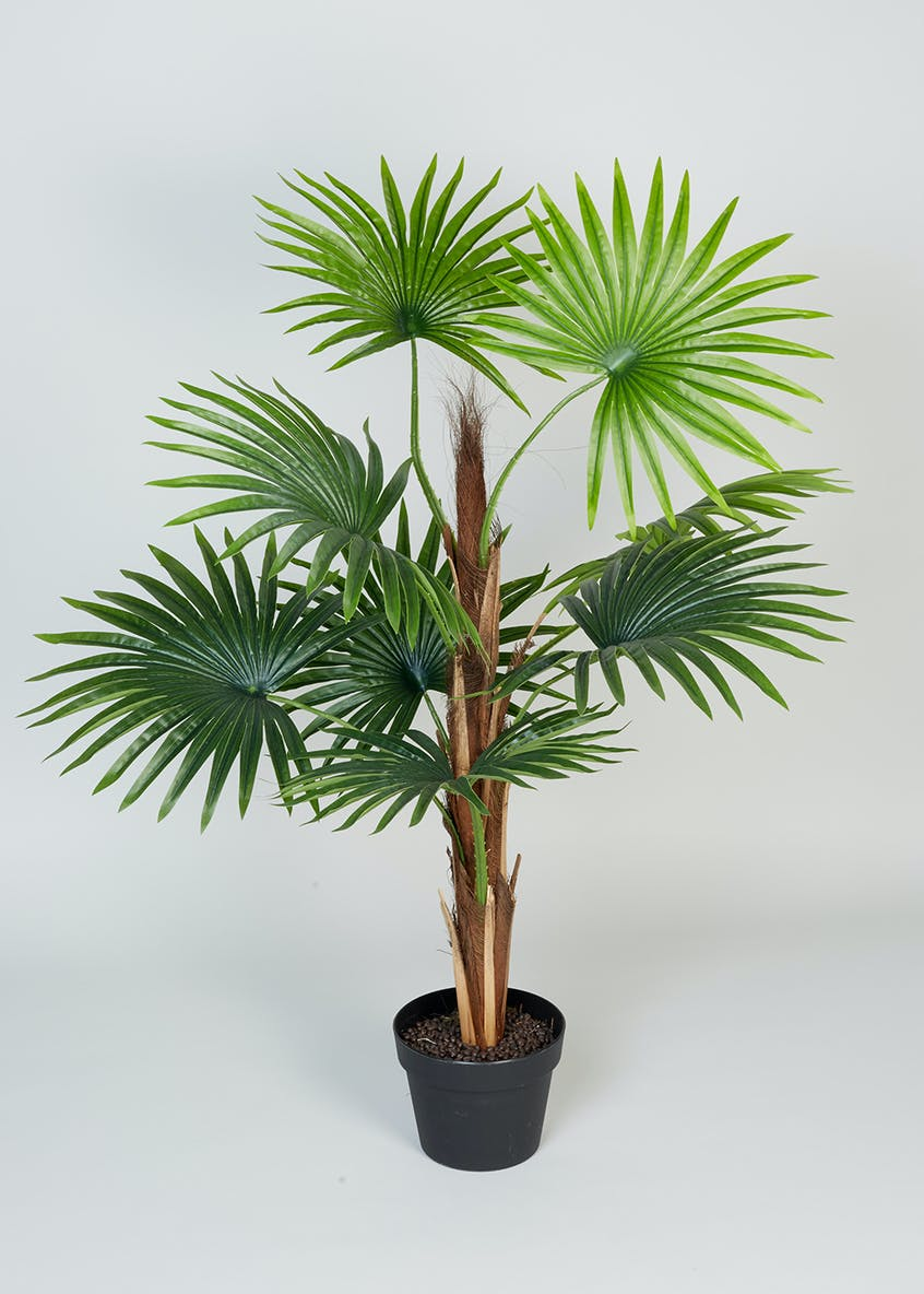 Mini Palm Tree in Pot (90cm)