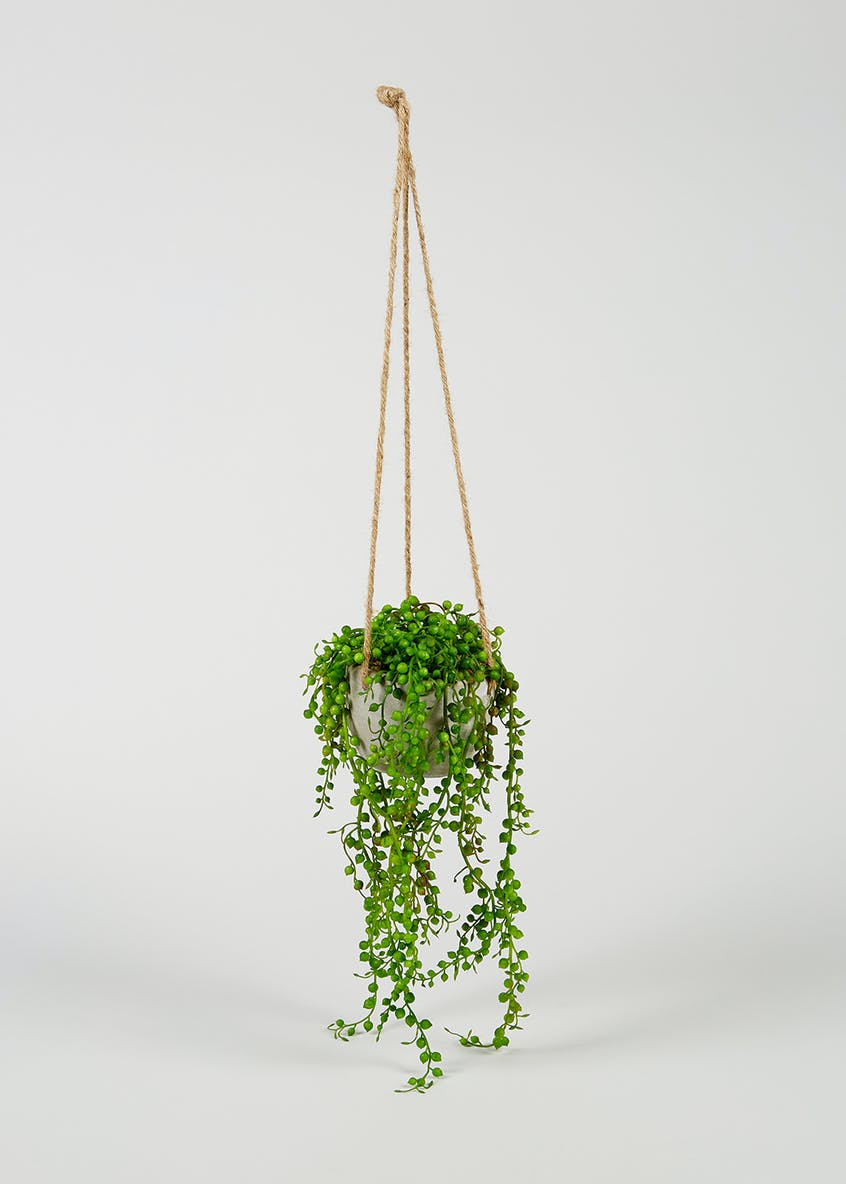 Hanging Plant in Cement Pot (77cm x 20cm x 15cm)