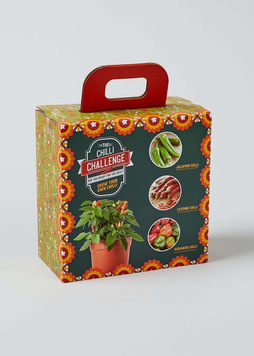 Grow Your Own Chilli (20cm x 19cm x 10cm)