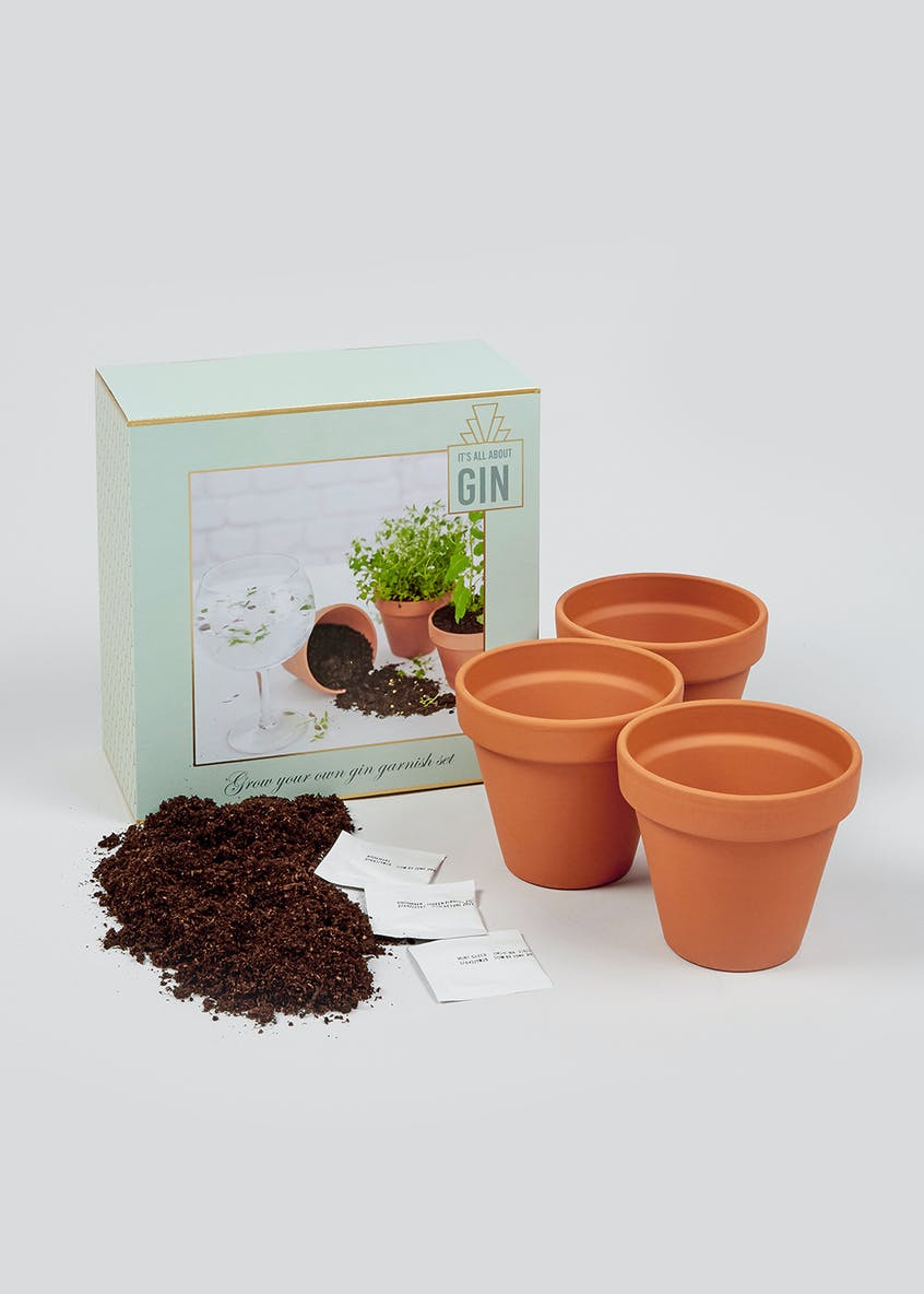 Grow Your Own Gin Garnish Kit (20cm x 19cm x 10cm)