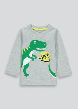 Boys Long Sleeve Dinosaur T-Shirt  (9mths-6yrs)