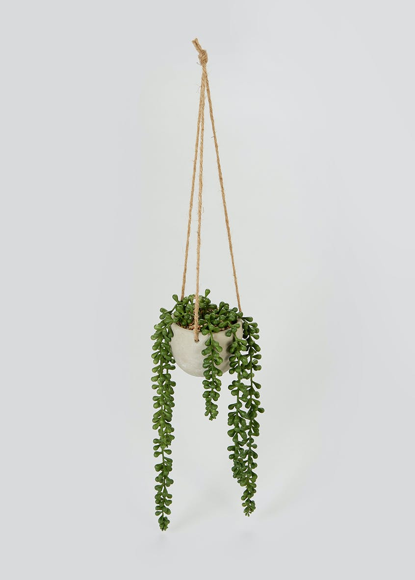 Hanging Plant in Cement Pot (70cm x 20cm x 10cm)