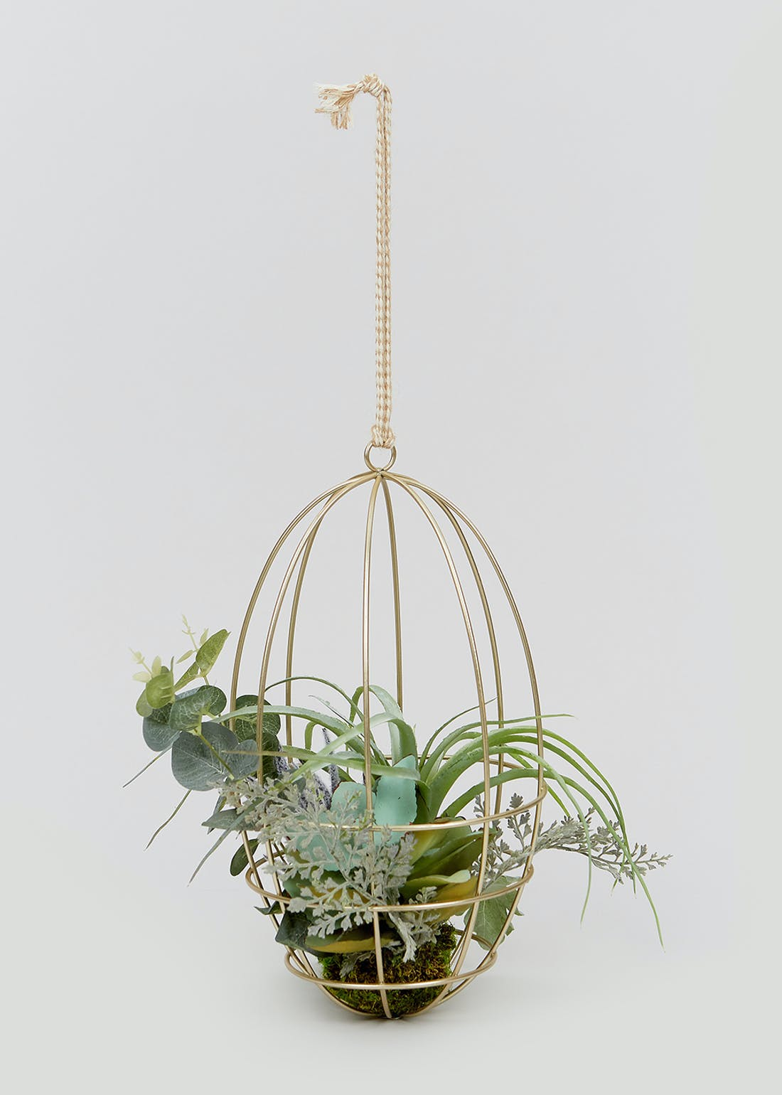 Succulents in Hanging Wire Planter (45cm x 17cm)