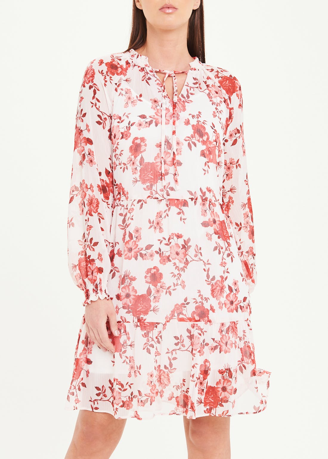 Cream Long Sleeve Floral Chiffon Dress