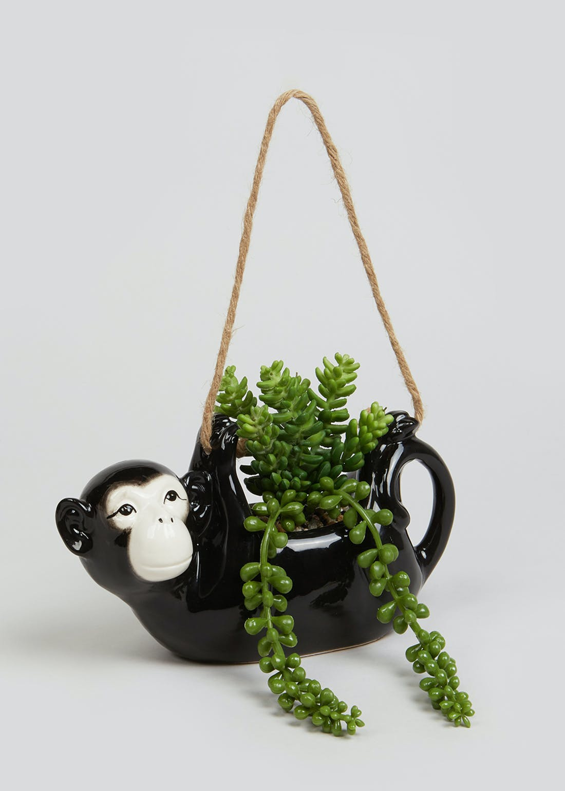 Trailing Succulent in Hanging Monkey Planter (30cm x 22cm x 9cm)