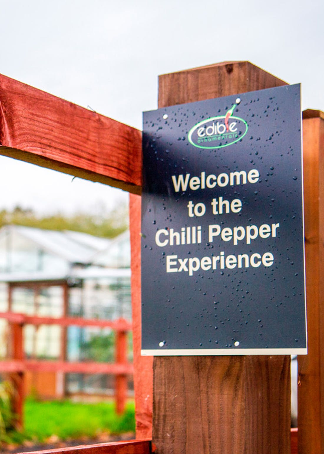 Virgin Experience Days Chilli Afternoon Tea for 2 with Chilli Tasting