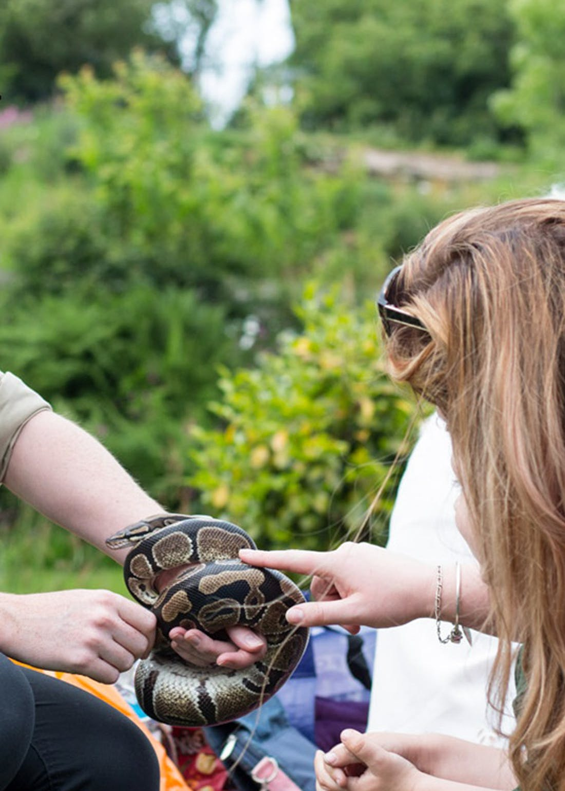 Virgin Experience Days Reptiles & Bugs at Dartmoor Zoo