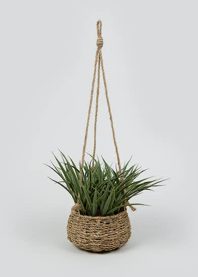 Plant in Woven Hanging Basket (55cm x 17cm x 17cm)