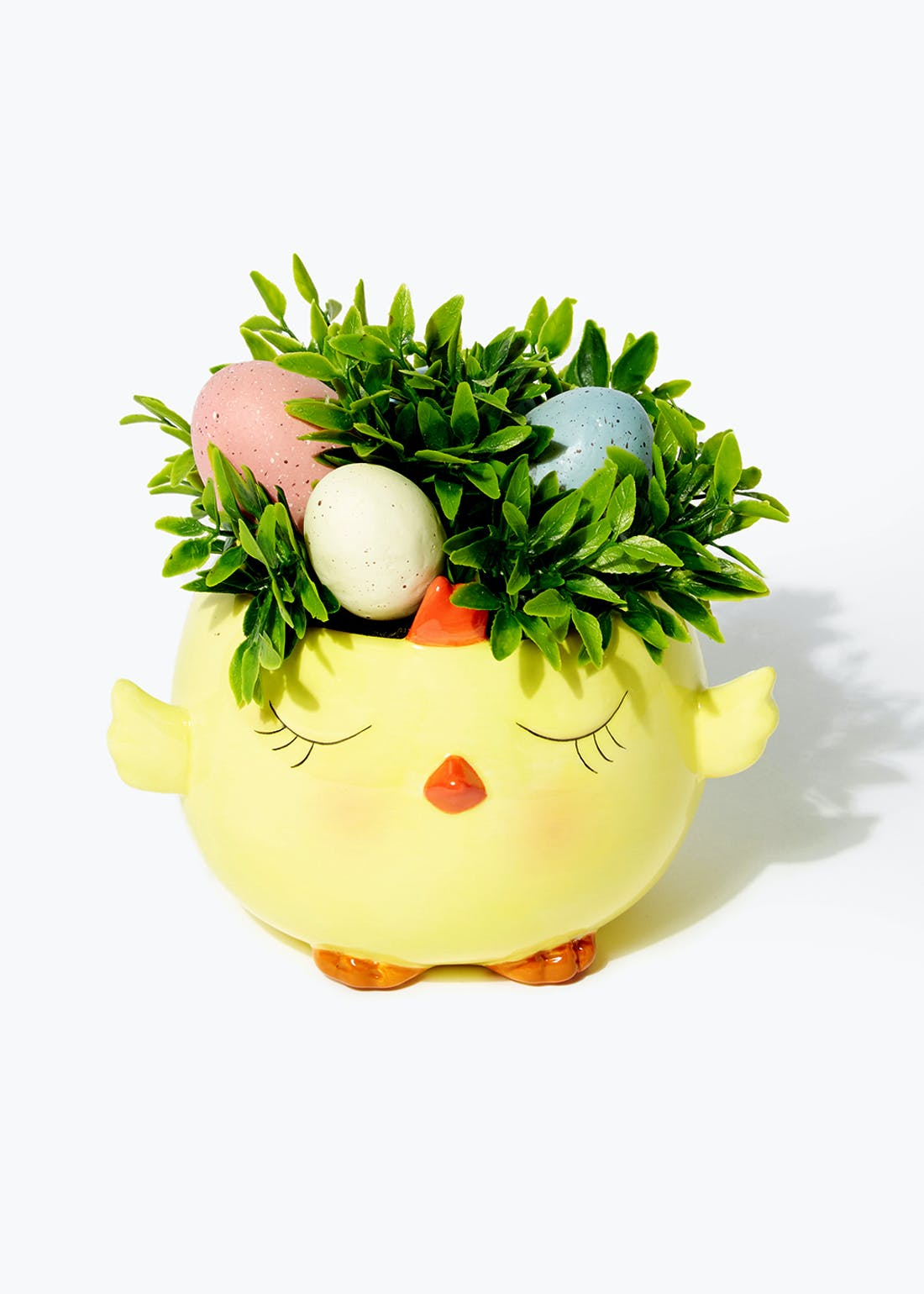 Easter Plant in Chick Pot (16.5cm x 14.5cm)